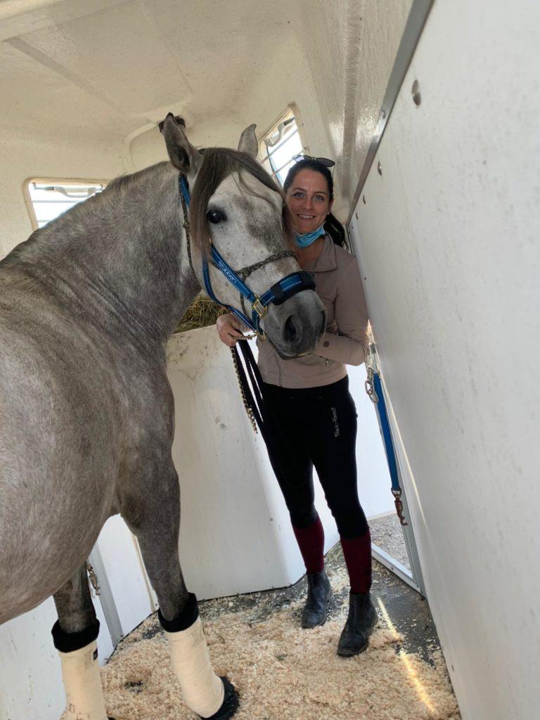 Verladetraining_ equiprana Pferdetraining